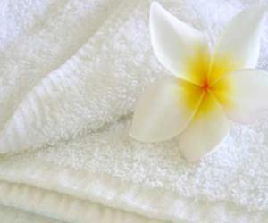 Obrazek Ręcznik frotte 50x100 cm. Gramatura 500/m2. Kolor biały Ręcznik hotelowy frotte 100% bawełny.