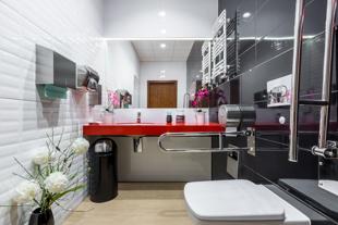 Obrazek dla kategorii Podajniki do papieru i ręczników / Dozowniki do mydła